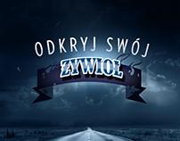 Website for Zywiol