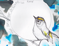 The Bird That Swallowed the Moon