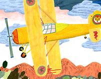 tiger star airplane !