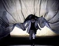 Darwin tra le nuvole.... Piccolo Teatro di Milano