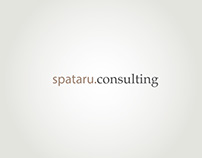 Spataru Consulting Corporate Design