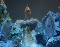 TRIDENT REFRESH - FISHES / Stink / CLAN vfx