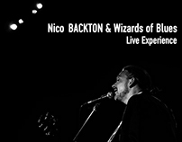 Down in Mexico - Nico BACKTON & Wizards of Blues Live
