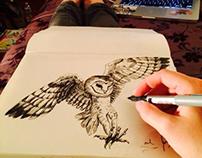 Sketch-Booking Through Life