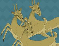 The Gazelle