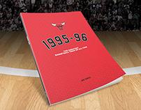 Chicago Bulls Print Concept