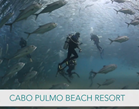 Cabo Pulmo Beach Resort - World's Best Diving & Resorts
