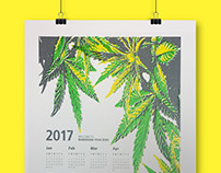 A New Reputation for Marijuana - 2017 Calendar