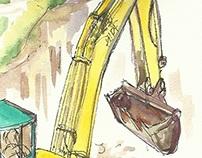 Cranes playing at home / Grues tocant a casa