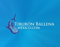 Cápsula informativa del Tiburón Ballena p/ conferencia