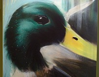 Duck Graffiti