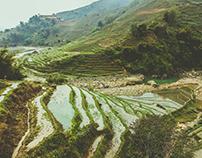 Vietnam | Sapa Trek
