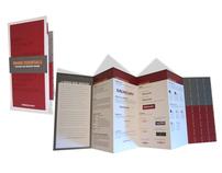 Mercury Interactive Branding Brochure