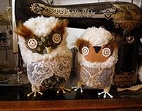 Celesta owl