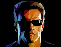 Terminator Triangulation Vector