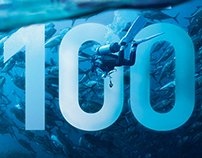 Top 100 Dealer Groups feature article