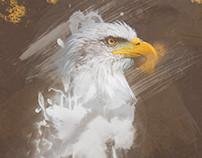 Photomanipulation eagle