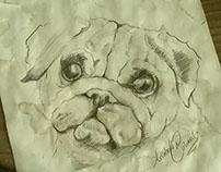 Da Vinci dog study