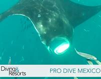 Pro Dive Mexico WBDR Video