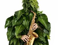 Garanti Jazz Yesili