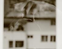 Photographie  // Focus sur la ville.