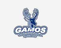 Universidad Marista de Querétaro - Gamos