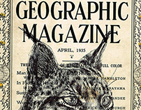 Bic biro drawing of a Lynx on a 1935 National Geographi