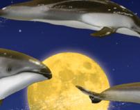 Shedd Aquarium Fantasea campaign