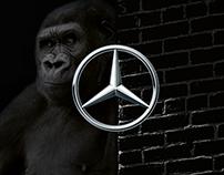 GLK Mercedes Benz