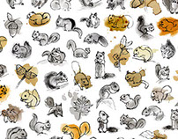 Doodle - squirrel
