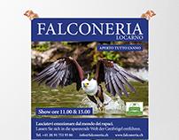 Poster Falconeria di Locarno
