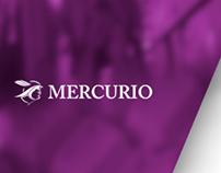 Diseño web para Mercurio - Gestión integral By Axon