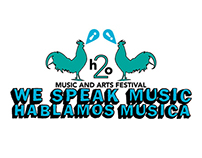 Music Festival Identity