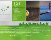 TGI Flash Home page