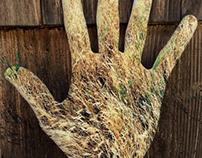 Hand/grass