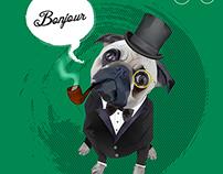 The Gentleman Pug