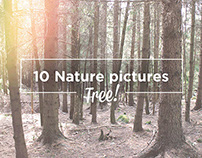 10 FREE NATURE PICTURES