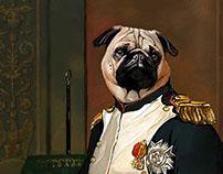 napollion pug