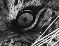 Sumatran Roar - Details