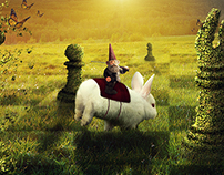 Nature Friendly Chess Photomanipulation
