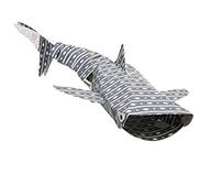 SHARK WEEK: Whale Shark