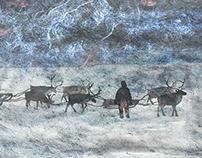 Тундрадом. Пурга, Олени / Tundrahome. Blizzard. Deers