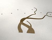 Studio logo animation