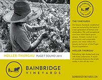 Bainbridge Vineyards Brand Development & Packaging