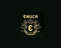 ENUCA Website