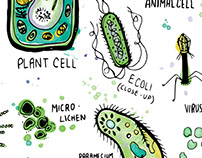 Microbiology Illustration