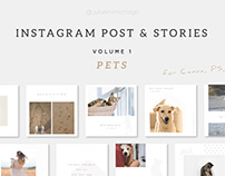 Instagram Post & Stories. Pets