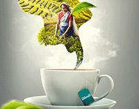 Dilmah Tea | Ceylon tea KVs