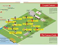 Infográfico Caricaco 2015