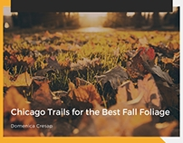 Chicago Trails for the Best Fall Foliage